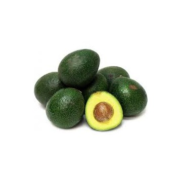 AGUACATE REED ECO