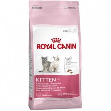 Royal Canin Feline Kitten 36 10 Kg