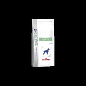 Canine dental dog 6 kg.