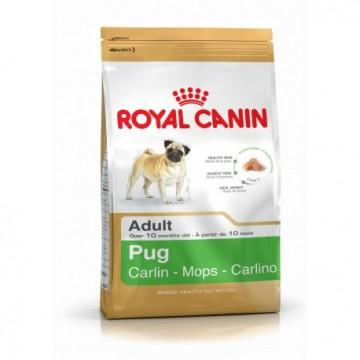 Pug 25 (carlino) 3 kg (breed)
