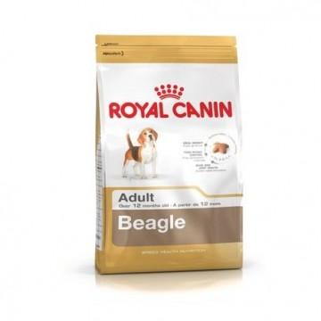 Beagle adulto 12 kg. (bhn)