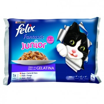 Felix junior agail gij mvbu 10x4x100 gr