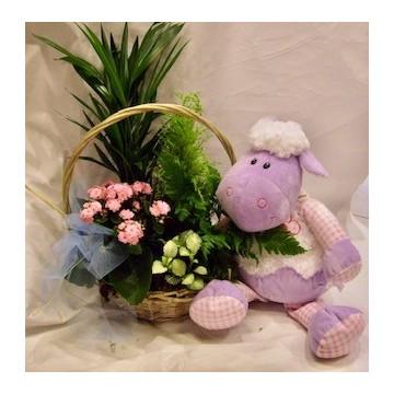 Cesta plantas y muñeco