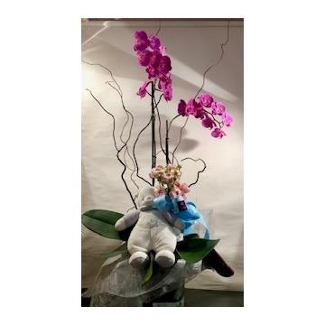 Orquidea con muñeco y vidrio