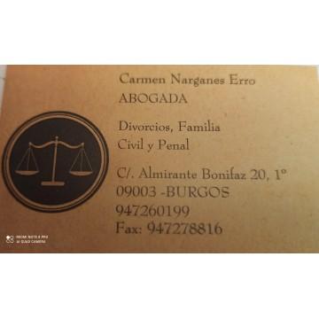 CONSULTA DIVORCIO, CUSTODIAS, MENORES, INCAPACIDAD, HERENCIAS
